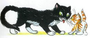 котенок и черный кот