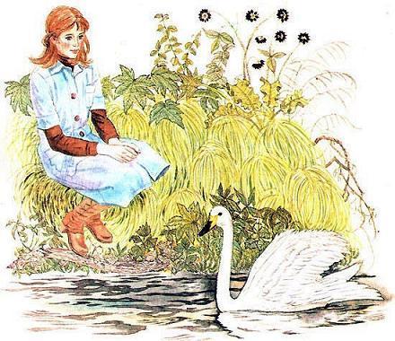 девушка на берегу и лебедь