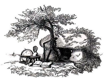 Лебединое гнездо
