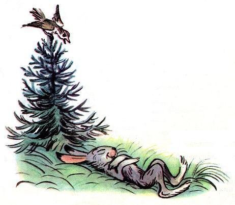 Лесной Плакунчик