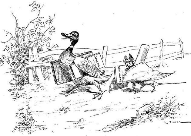 Летучая мышь, куст и утка