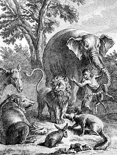 Лев в походе