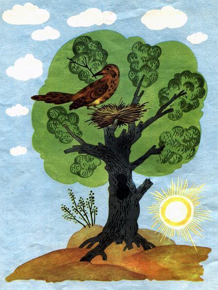 дерево, а на дереве вил гнездо дрозд