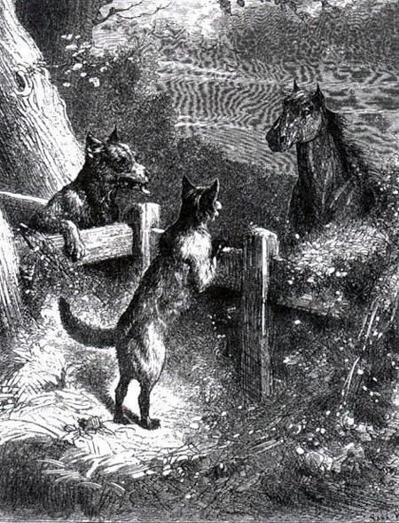 Лисица, волк и лошадь