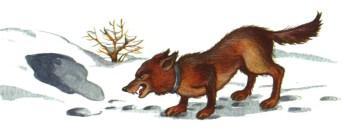 пес собака у лисьей норы