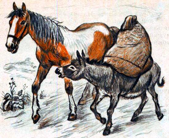 Лошадь и осёл