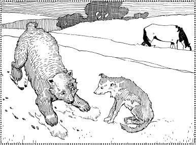 Медведь, собака и кошка (русская сказка)