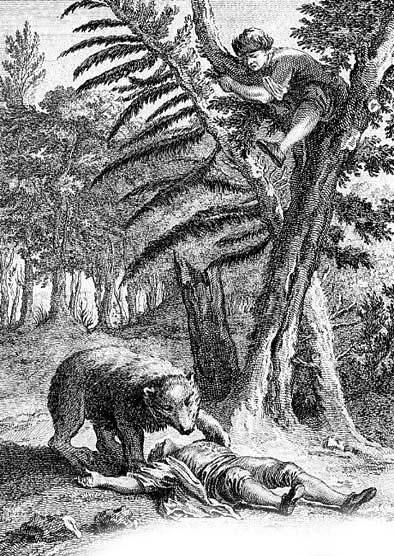 Медведь и два охотника