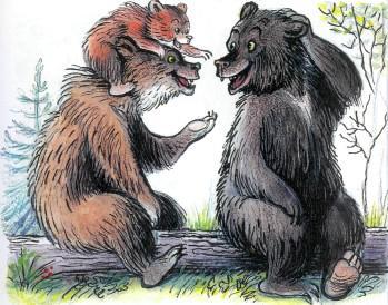 медведи медвежонок родители