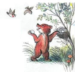медвежонок гнездо птицы