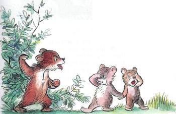медвежата обида