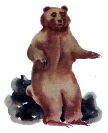 Медвежья трава