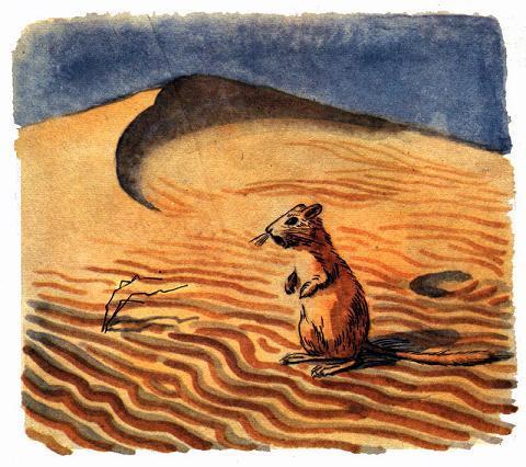 Смотрю: около норки, на склоне песчаного бугра, сидит маленький рыжий зверёк с пушистым хвостиком, сидит на задних лапках, поглядывает по сторонам и распевает