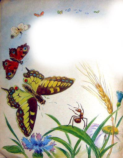 муравей и бабочка