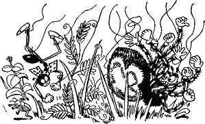 муравей Ферда разорвал паутину и упал с пауком на землю