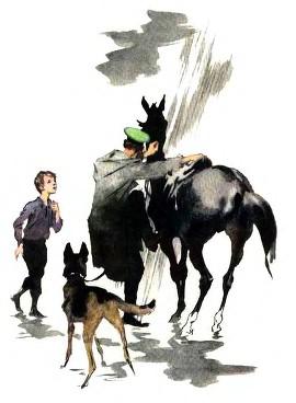 пограничник на лошади с собакой