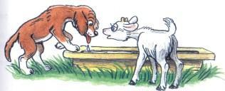 Сказка:щенок и козленок пьют из корыта воду