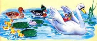 лебедь утки на озере воде пруду