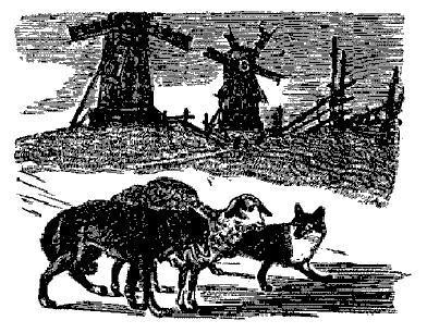 Овца, лиса и волк