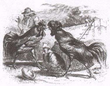 Петухи и куропатка