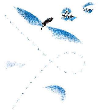 следы на снегу и заяц