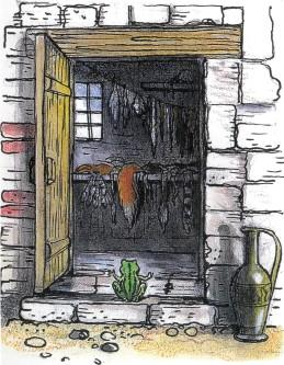 Лагушка у дверей дома