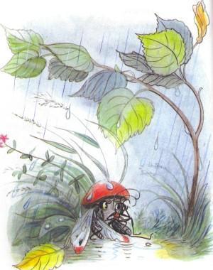 бабочка и муравей под грибом дождь