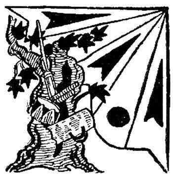 Похищение инструментов Журупари