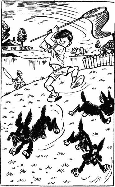 Денискины рассказы: Похититель собак