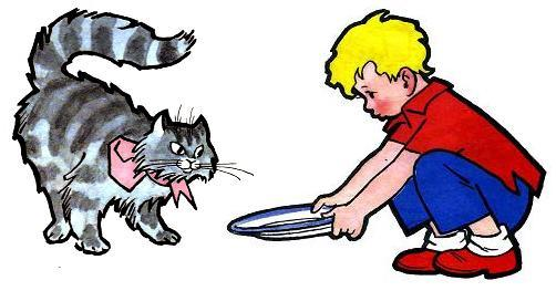 мальчик дает кошке молоко