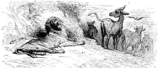 Престарелый лев, кабан, бык и осёл