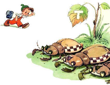 Мурзилка и жуки