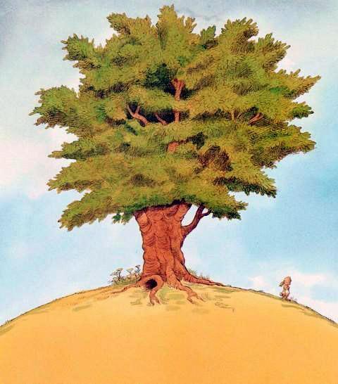 Ёжик и Кролик огромное дерево