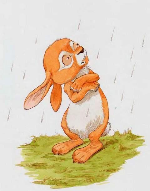 под дождем Кролик