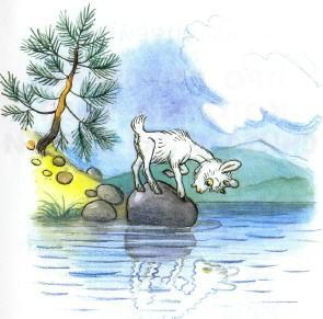 козленок у озера отражение в воде