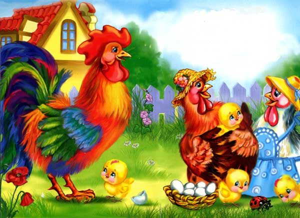 петух курица и цыплята