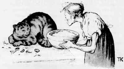 хозяйка и кошка