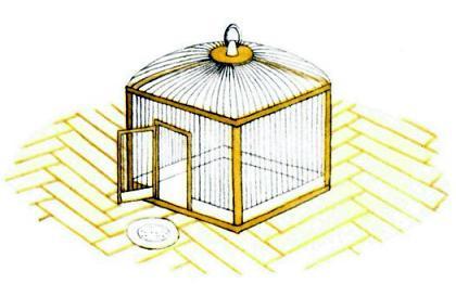 Птичка (рассказ) - Клетка