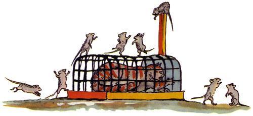 Мыши кошку изловили, В мышеловку посадили