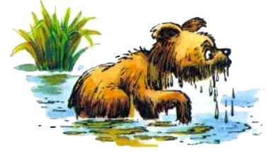 мокрый медвежонок в озере