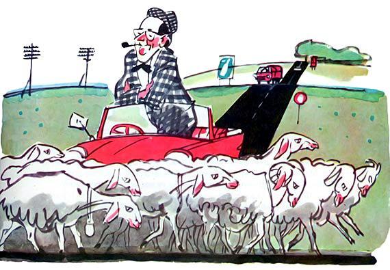 маленький автомобильчик стоит дорогу переходит стадо овец