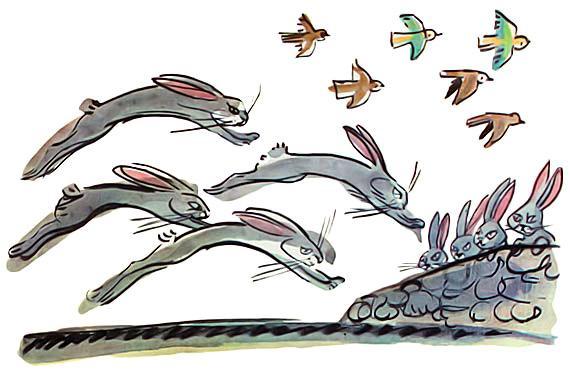 зайцы бегут