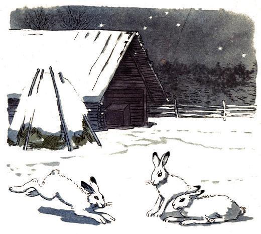 белые зайцы на снегу у избы
