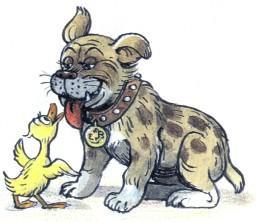 утенок дружба бульдог имтбуль собака пес
