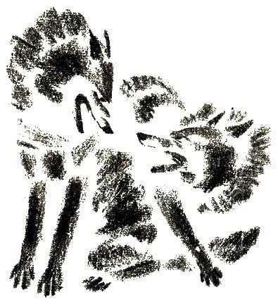 Напали на козлика серые волки