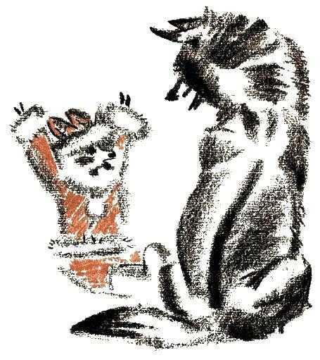серые волки