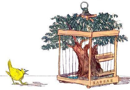 клетка и птица