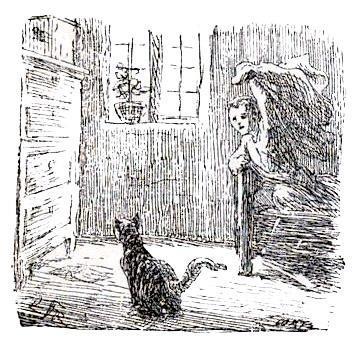 мальчик замахивается на кота