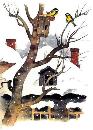 Синицы у скворечника снег