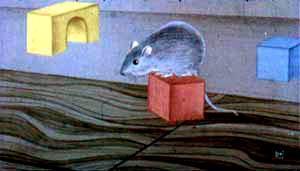 из норки выскочила мышка